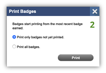 MobyMax Badges 3
